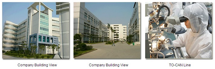 Shenzhen Wiitek Technology Co.,Ltd-Optical Transceiver Factory